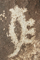 Rockart from Petroglyph National Monument, Albuquerque, New Mexico